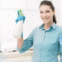Kāpēc mājsaimnieces visā pasaulē sāk pāriet uz organisko sadzīves ķīmiju?